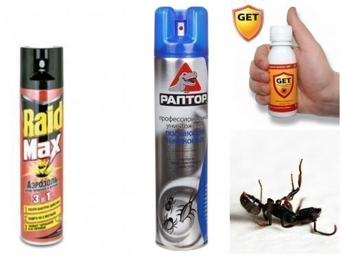 Аэрозоль Гет против муравьев