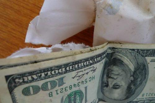 Плесень на долларах