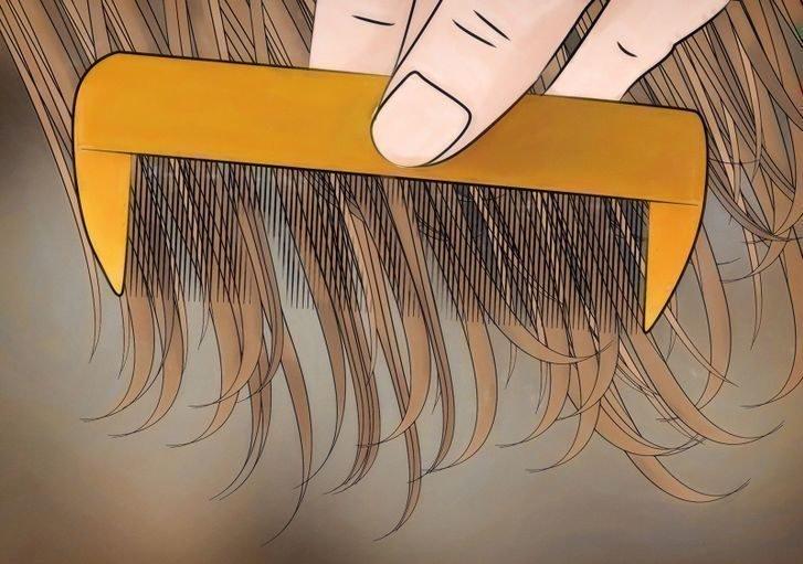 Вычесывание вшей