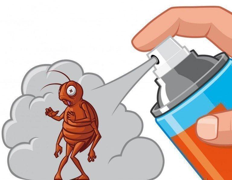 Борьба с тараканами и клопами