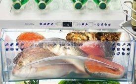 Сколько и как хранится свежая и приготовленная рыба