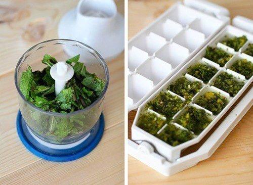 Заморозка зелени для хранения