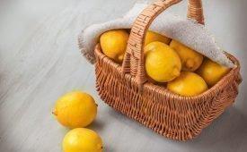 10 проверенных способов хранения лимонов дома