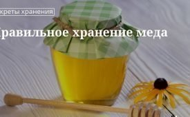 20 правил для сохранения свойств меда и пчелиных продуктов