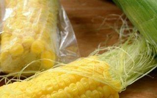 Способы сохранить початки кукурузы в домашних условиях