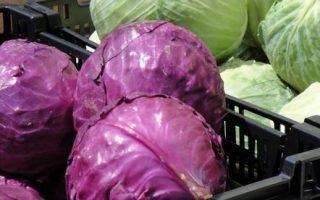 Секреты хранения разных видов капусты