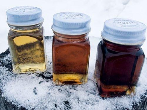 Кленовый сок и сироп: с медом и на хвое