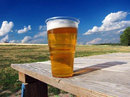 Пиво против тараканов
