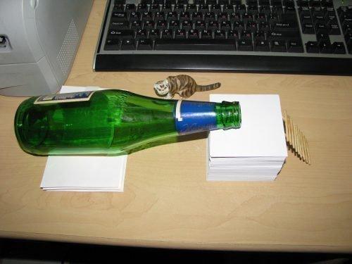 Ловушка для грызунов из бутылки