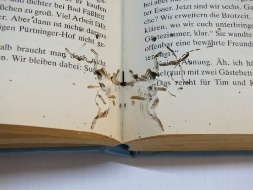 Мокрицы в книгах