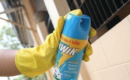 Распыление инсектицида
