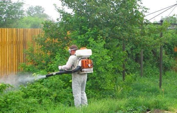 Обработать участок от комаров 124