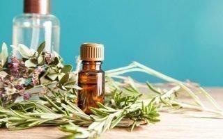 Народные средства от комаров на основе уксуса, масла и шампуня