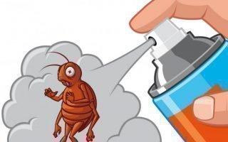 Борьба с домашними клопами и тараканами
