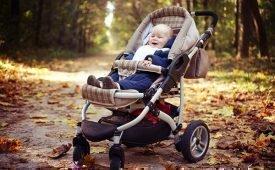 Как отстирать плесень с детской коляски — проверенные способы