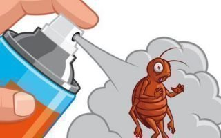 Какие лучше применять препараты, уничтожающие клопов?