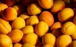 Способы переработки абрикосов