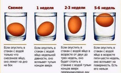 Проверка яиц в воде