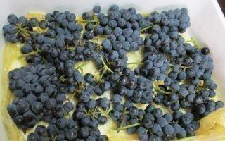 Проверенные способы хранения винограда